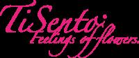 TiSento logo pink LC